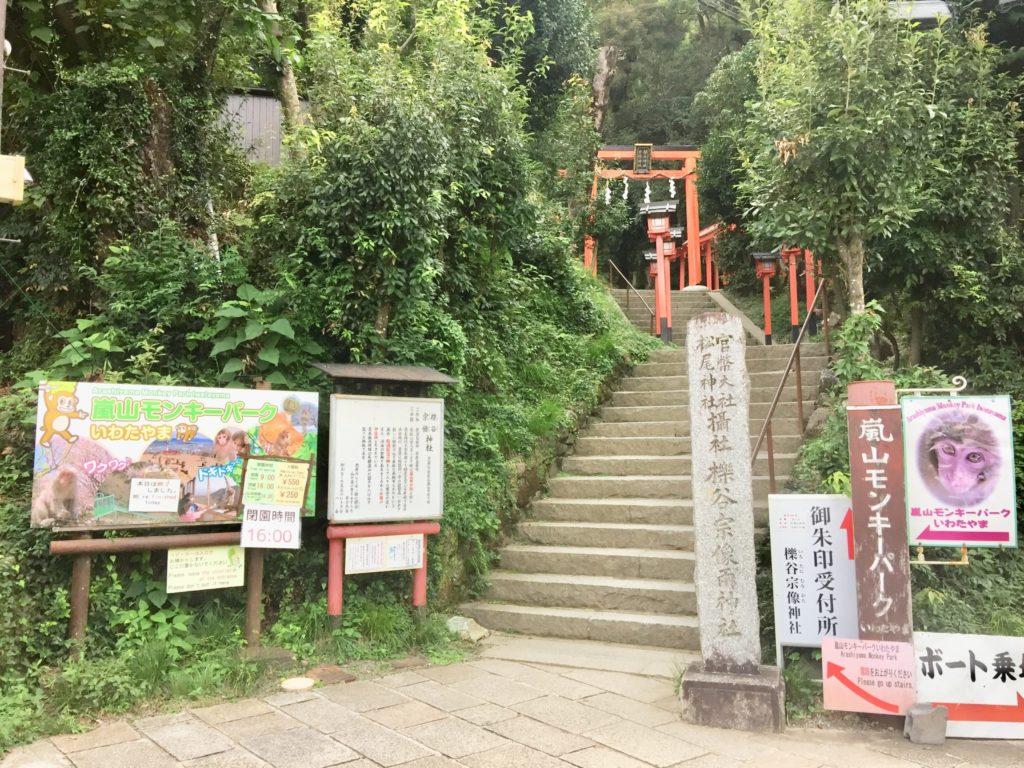 Kyoto – le parc aux singes d'Iwatayama
