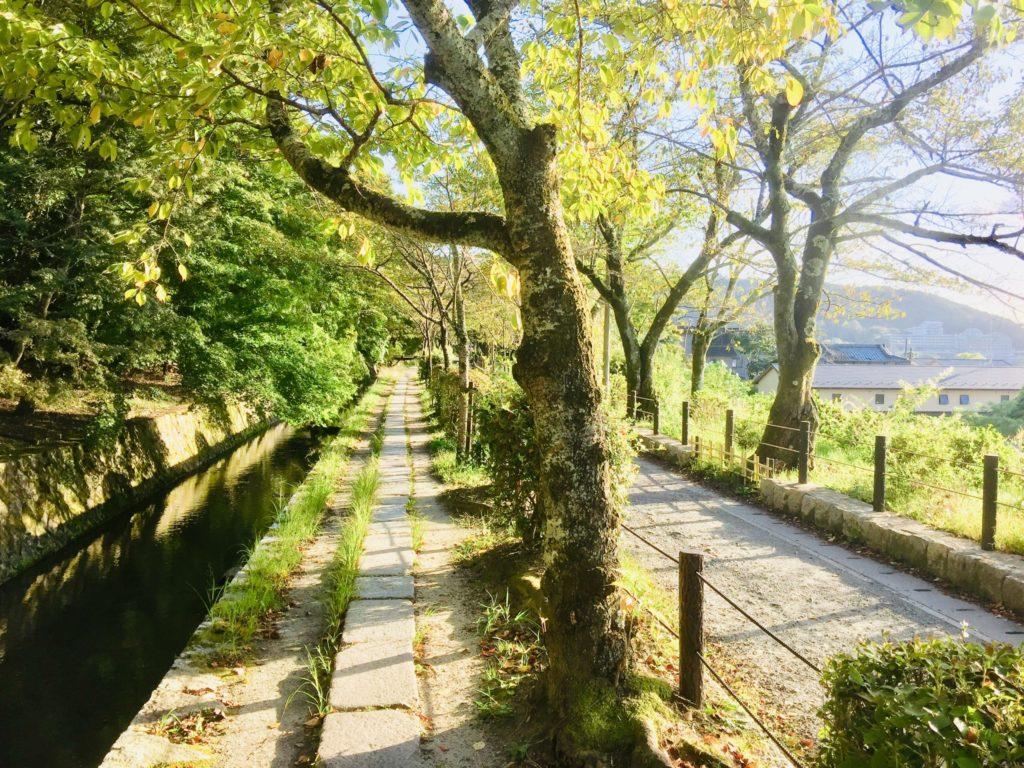 Kyoto - le Chemin de la philosophie